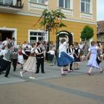 majusfa-allitas-2013-pilisvorosvar-011