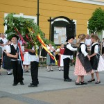 majusfa-allitas-2013-pilisvorosvar-015