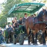 szureti-felvonulas-2012-025