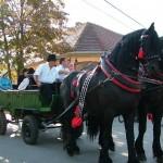 szureti-felvonulas-2012-031