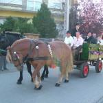 szureti-felvonulas-2012-041