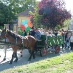 szureti-felvonulas-2012-043