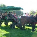szureti-felvonulas-2012-050
